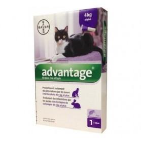Advantage Para Gatos de 4 a 8 Kg