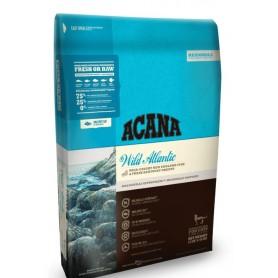 Wild Atlantic Gato 1.8 kg
